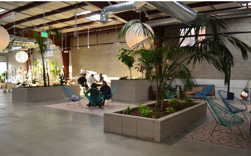 the springs wellness center interior 1