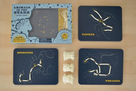 Animals in the stars activity cards 4