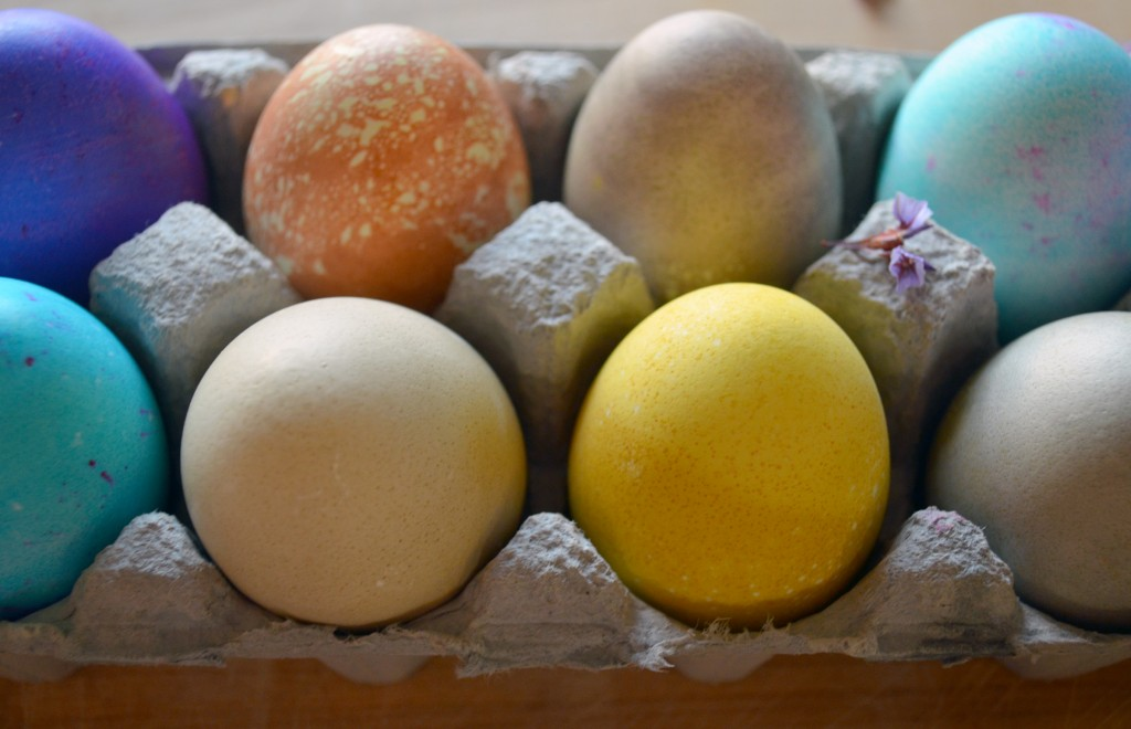 naturally dyed Easter eggs - Natural Egg Dye 4